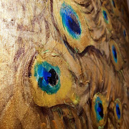 Peacock - detail photo
