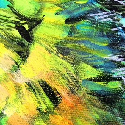 Hummingbird - detail photo